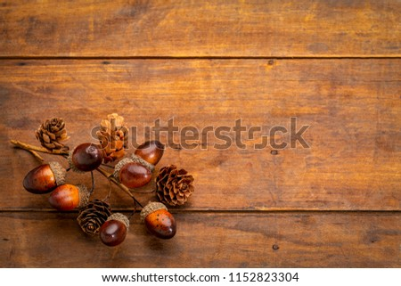 rustic weathered wood  background with acorns and cones fall decoration #1152823304
