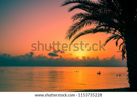Beach at sunset under the silhouette of a palm tree; the beach is La Manga of the Mar Menor