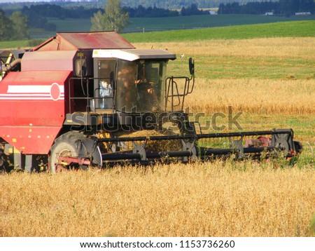 Combine harvester in oast field #1153736260