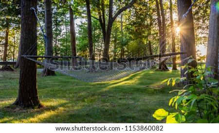 Sunny Hammock in the Trees #1153860082
