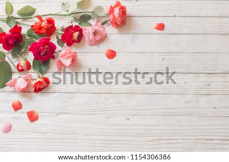 roses on white wooden background #1154306386