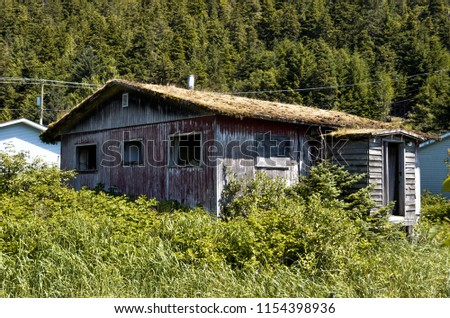 Old, abandoned house in Northern BC, Canada #1154398936