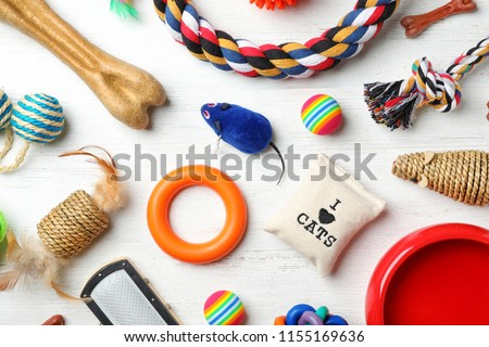 Flat lay composition with accessories for dog and cat on wooden background. Pet care #1155169636