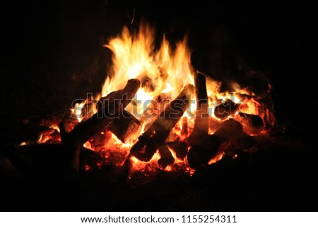 Bonfire at night #1155254311
