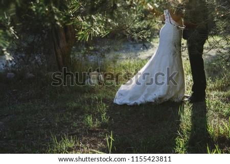 Wedding couple at their wedding strolling. #1155423811