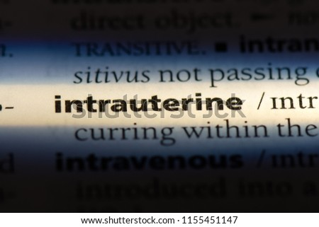 intrauterine word in a dictionary. intrauterine concept. #1155451147