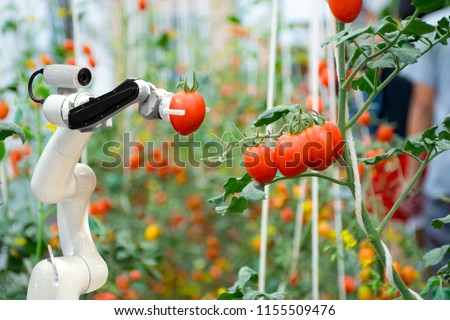 smart robotic farmers in agriculture futuristic robot automation to work to spray chemical fertilizer or increase efficiency Royalty-Free Stock Photo #1155509476