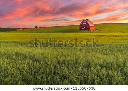 Red barn in Washington field at sunset