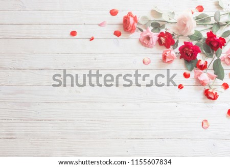 roses on white wooden background #1155607834