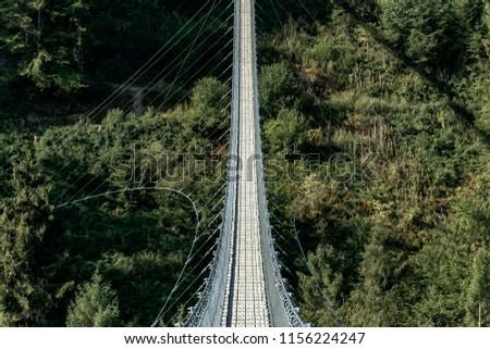 Suspension Bridge into forest #1156224247