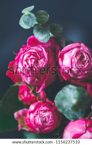 Macro photography of dark pink roses bouquet over blue. Soft focus, top view, close-up composition.