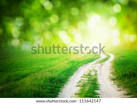 Lane in meadow and deep blue sky. Nature design. Royalty-Free Stock Photo #115642147