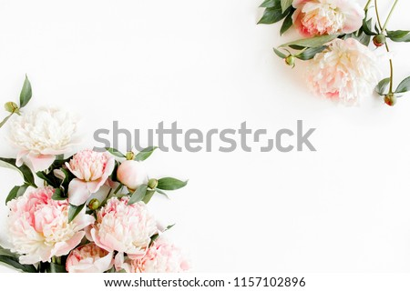 Border frame made of pink and beige peonies flower and isolated on white background. Flat lay, top view. Frame of flowers.