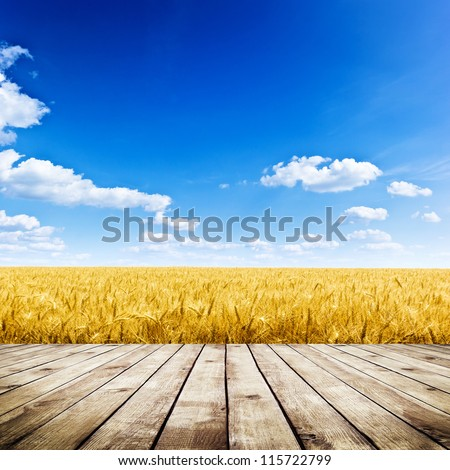 Wood floor over yellow wheat field under nice sunset cloud sky background #115722799