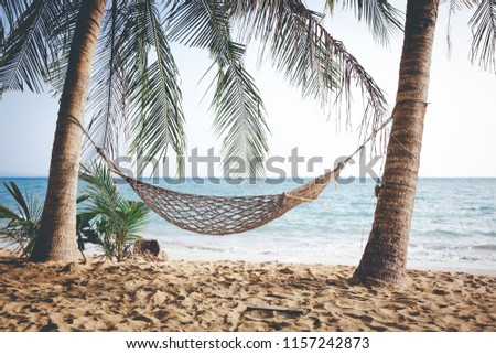Summer beach vacation concept, Hammock with coconut tree on sand at sunset in Koh Mak, Trad, Thailand #1157242873