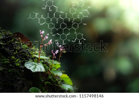Plants background with biochemistry structure. Copy space using as background or input any text as you wish. Natural and science concept. Royalty-Free Stock Photo #1157498146