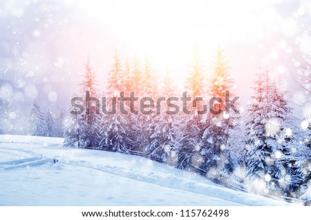 Beautiful winter landscape with snow covered trees Royalty-Free Stock Photo #115762498