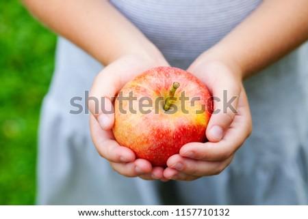 Red organic apple in little girl's hands. Summer garden background. #1157710132