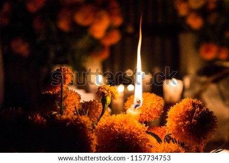 Christmas candle among flowers day of the dead, Janitzio Michoacan cemetery. Cempasuchil flowers Royalty-Free Stock Photo #1157734753