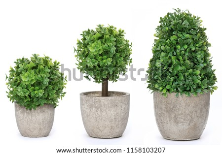 Set trees that decorate the room. Pot fake plant isolated on white #1158103207