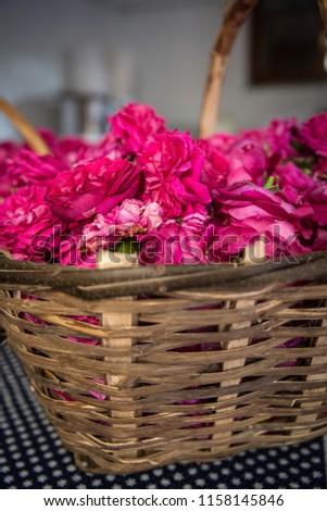 vintage basket with roses #1158145846