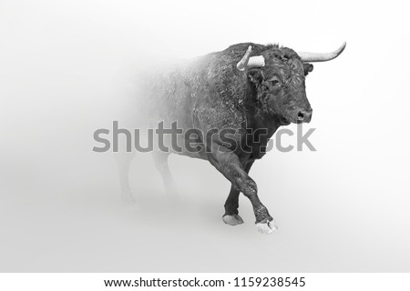 Bull wildlife art collection white edition, animal grayscale wallpaper #1159238545