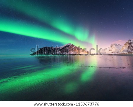 Northern lights in Lofoten islands, Norway. Green Aurora borealis. Starry sky with polar lights. Night winter landscape with aurora, sea with sky reflection, rocks, beach and snowy mountains. Travel #1159673776
