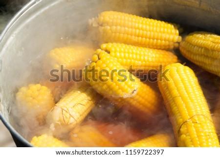 Boil corn in boiling water on a fire. #1159722397