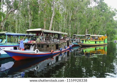 Klotok on Sekonyer river, Indonesia. Sekonyer is a river in southern Borneo. Part of river traverses the Tanjung Puting National Park. Travel on river is often done by klotok, an Indonesian riverboat #1159928338