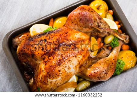 Whole roasted turkey with apples, pumpkin, potatoes, carrots and greens in baking dish #1160332252