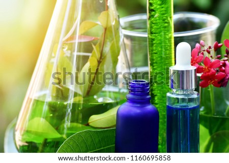 Drug research, Natural organic botany and scientific glassware, Alternative green herb medicine, Natural skin care beauty products, Research and development concept. #1160695858