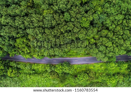 Above aerial view of rural road in deep rain forest with green tree by drone #1160783554