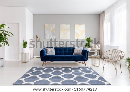 Real photo of bright living room interior with royal blue couch, three simple paintings, window with curtains and fresh plants #1160794219