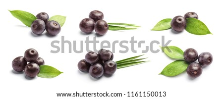 Set with acai berries and green leaves on white background. Organic superfood #1161150013