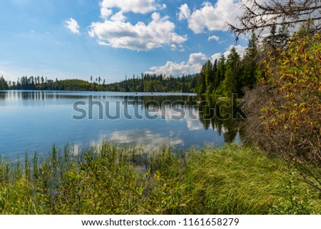 Nice landscape with lake in mountain forest #1161658279