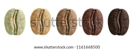 A collage of coffee beans showing various stages of roasting from green beans through to italian roast #1161668500