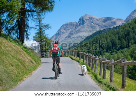 Man on mountain bike on the mountain road in the company of his dog. #1161735097