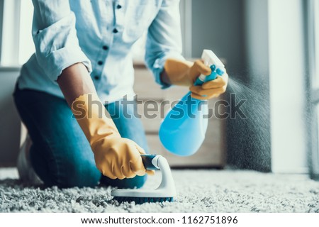 Young Beautiful Woman Cleaning Carpet with Brush. Closeup of Girl wearing Protective Gloves Cleaning Carpet by spraying Cleaning Products and using Brush. Woman Cleaning Apartment #1162751896