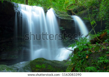 waterfall in deep forest  #1163083390