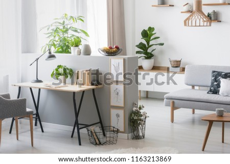 Real photo of bright living room interior with half-wall with posters and desk with books, fresh plants and window with curtains #1163213869