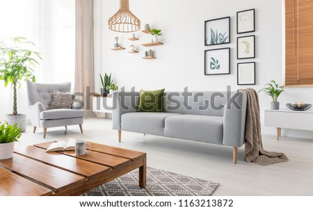 Real photo of grey sofa with green cushion and blanket standing in white living room interior with simple posters, fresh plants, armchair and wooden coffee table with open book and tea mug #1163213872