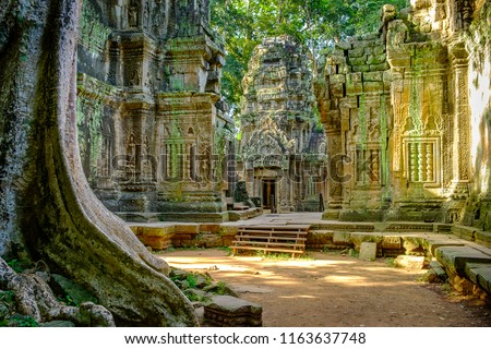 Ta Prohm temple in the morning light. Part of the Angkor Wat complex, Seam Reap, Cambodia. Film location for Tomb Raider. #1163637748