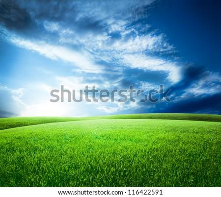 Green field under blue sky. Beauty nature background