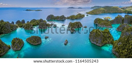 Pianemo Island, Blue Lagoon, Raja Ampat, West Papua, Indonesia #1164505243
