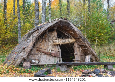 Stone Age hut of reeds in the woods #1164649201