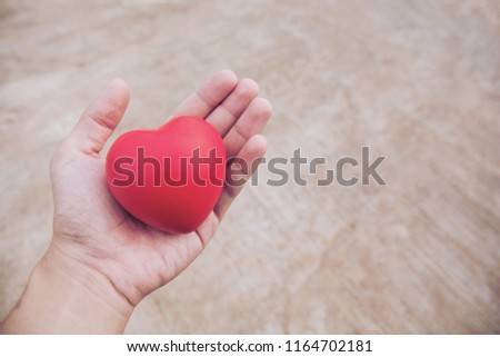 Red heart ball : Stress reliever foam ball the red heart shape on woman hand. Gift valentine's Day #1164702181