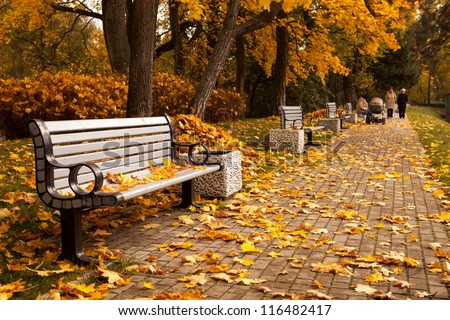 The perspective of the row of benches in autumn park while fall with walking people in background #116482417