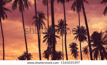 Copy space of silhouette tropical palm tree with sun light on sunset sky and cloud abstract background. Summer vacation and nature travel adventure concept. Vintage tone filter effect color style. #1165035397