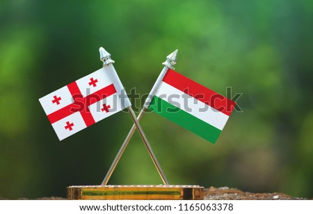 Hungary and Georgia small flag with blur green background #1165063378