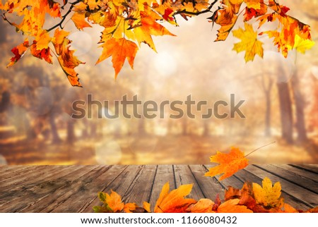 Wooden table with orange leaves autumn background #1166080432